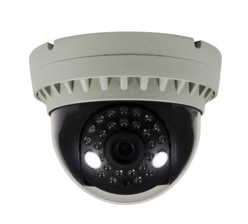 HD IP 2.1 Mp Indoor Dome Surveillance Camera